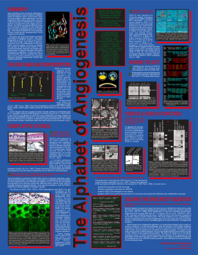 1998 (Poster for the Viikki Science Fair): The Alphabet of Angiogenesis