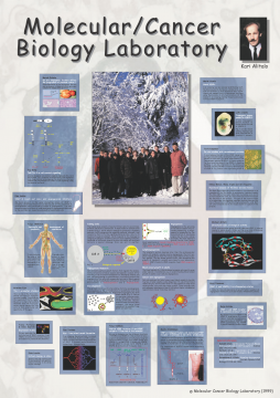 1999 (Science Fair Poster): Projects in the Molecular/Cancer Biology Laboratory