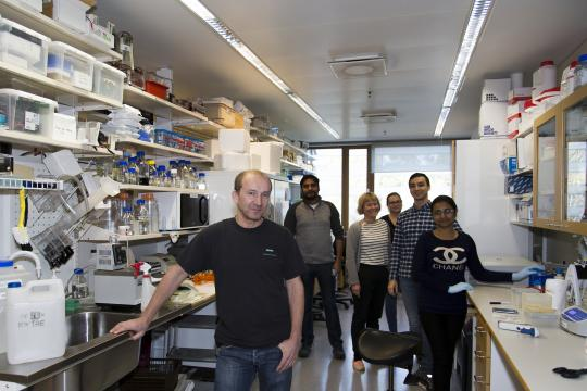 The Jeltsch Laboratory: Michael, Sawan, Liisa, Enni, Rustem, Khusbu (missing: Zalina)