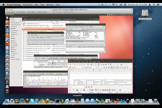 x11vnc screenshot