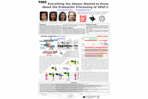 IVBM 2018 poster T005 (Michael Jeltsch)