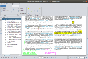 PDF Studio Viewer