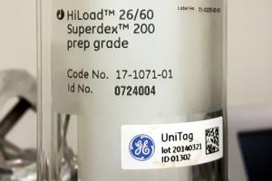 HiLoad 25/60 Superdex 200 pg