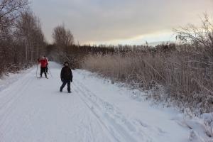 Skilanglauf auf der Loipe in der Nähe von Vanhakaupunki
