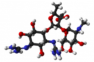 Streptomycin model