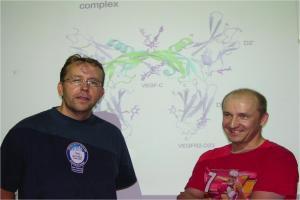 Veli-Matti Leppänen and Michael Jeltsch in front on VEGF-C/VEGFR-2 structure